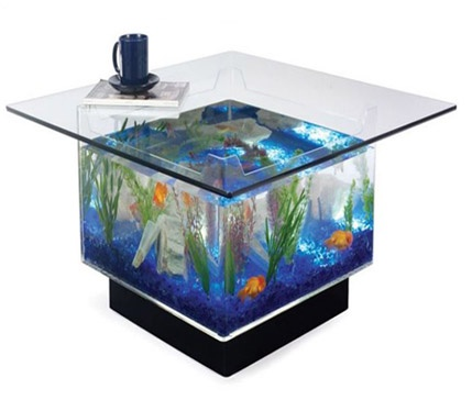 25 Gallon Aqua Coffee Table.Aqua Square Coffee Table 25 Gallon Aquarium